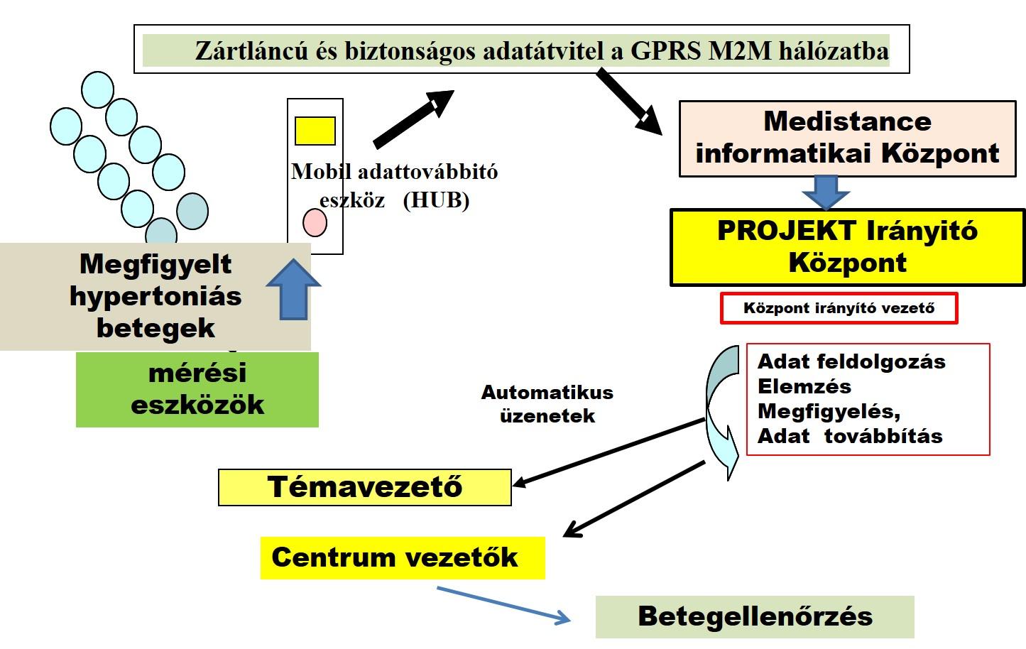 hipertóniás elemzések vizsgálata)
